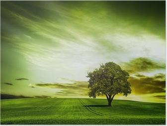 Plakát HD Zelené přírody