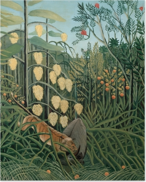 Plakat Henri Rousseau - Walka pomiędzy tygrysem a bawołem - Reprodukcje