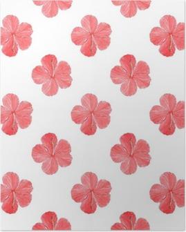 Plakát Ibišek. Bezešvé vzor s květinami. Ručně kreslená pozadí