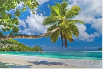 Plakat Idylliczna tropikalna sceneria - Seszele