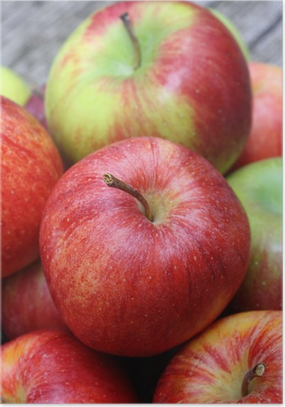 Plakát Jablka - Ovoce