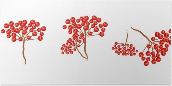 Plakát Jeřabina - Stromy