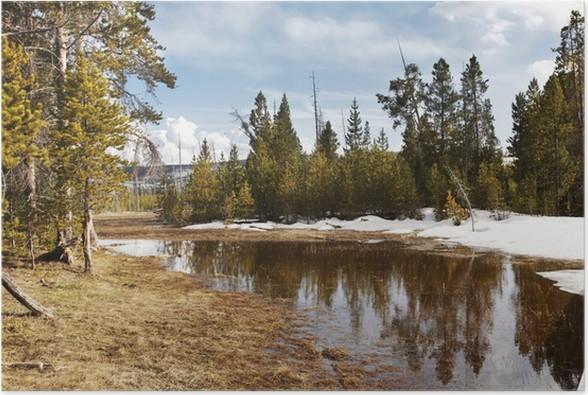 Plakát Jezero v lese - Lesy