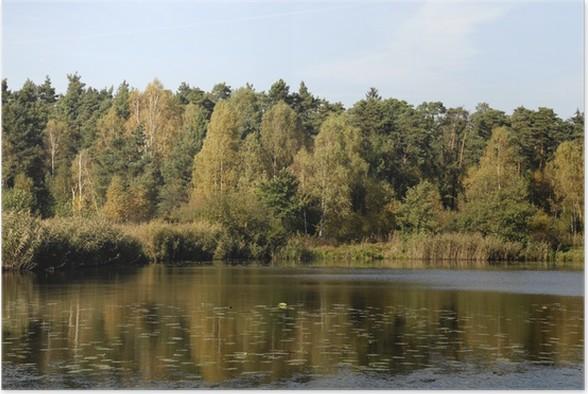 Plakát Jezero - Témata