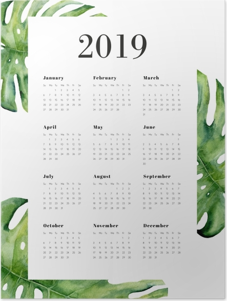 Plakát Kalendář 2019 - Monstera -