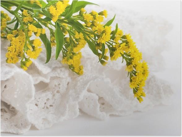 Plakát Kytice od žluté astry, květina pozadí - Květiny