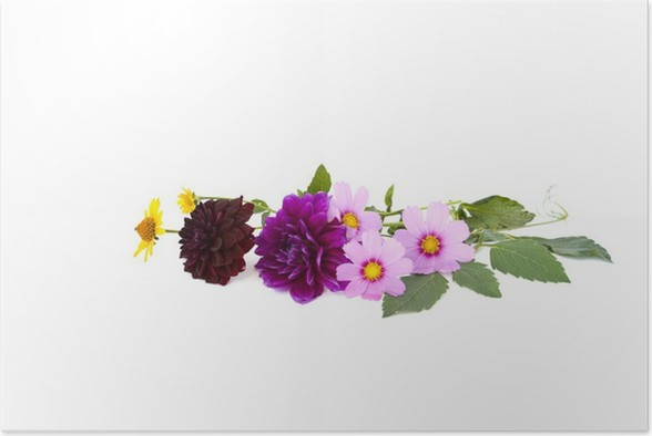 Plakát Kytice - Květiny