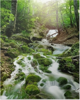 Plakat Leśny wodospad