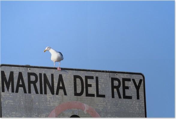 Plakát Marina del Rey - Ptáci