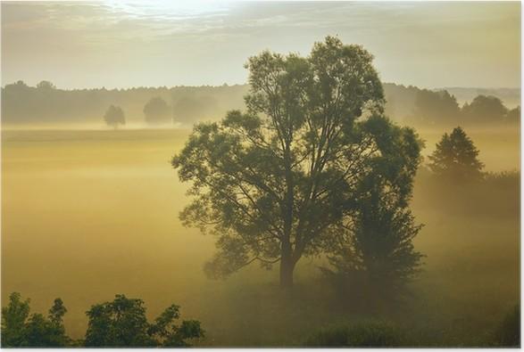 Plakát Mlha - Příroda a divočina