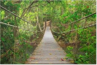 Plakat Most do dżungli, park narodowy Khao Yai, Tajlandia