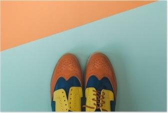 Plakat Płaski lay zestaw mody: kolorowe vintage buty na kolorowym tle. Widok z góry.