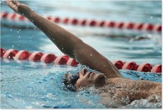 Plakat Pływanie - Sport