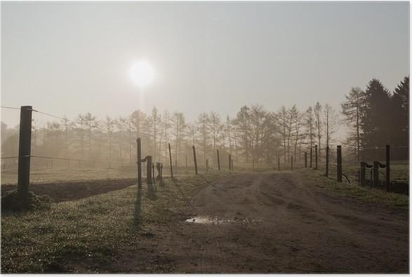 Plakát Podsvícený fotografie polní cestě a pastviny s mlžným oparem - Jiné