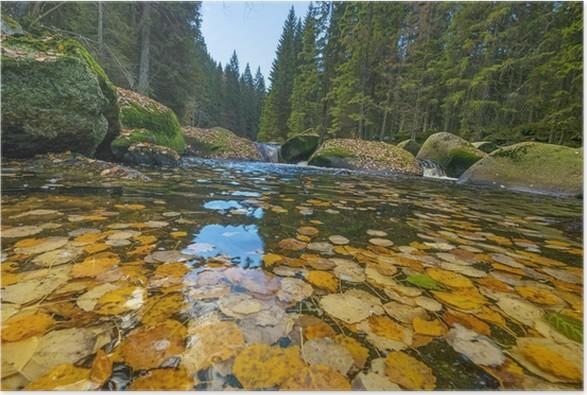 Plakát Podzimní řeka - Roční období