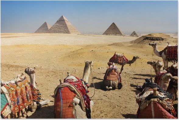 Plakát Pyramidy v Gíze., Káhira, Egypt - Památky