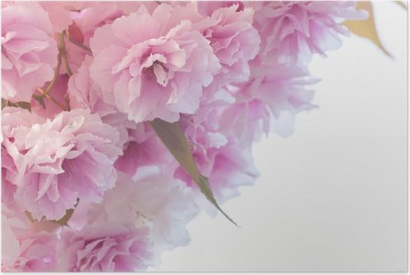 Plakát Ruzova kvitina - Květiny