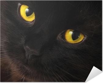 Plakat samoprzylepny Czarny kot patrzy na ciebie z jasne żółte oczy