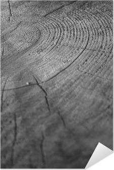Plakat samoprzylepny Drewno