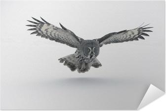 Plakat samoprzylepny Great Grey Owl. (Strix nebulosa)