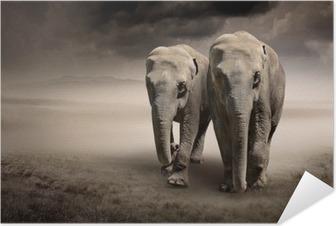 Plakat samoprzylepny Para słoni w ruchu