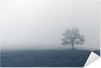 Plakat samoprzylepny Samotne drzewo w mgle