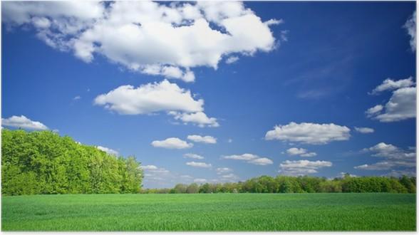 Plakát Splendid zelená pole a fantastické modré nebe s mraky. - Zemědělství
