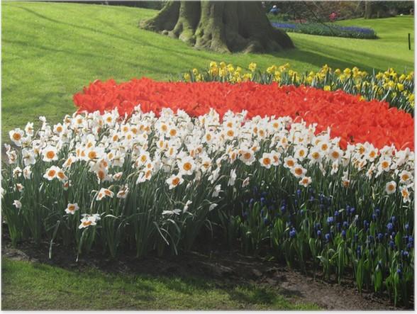 Plakát Světlé barvy - Domov a zahrada