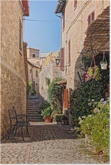 Plakat Uliczka z kwiatami małego miasteczka w Umbrii, Włochy