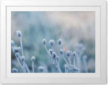 Plakát v rámu Abstraktní přirozeného pozadí ze zmrazeného rostliny pokryta námraza nebo jinovatka