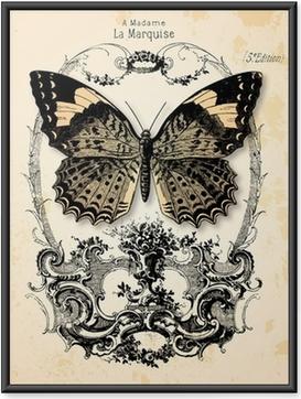 Plakát v rámu Motýl pozadí