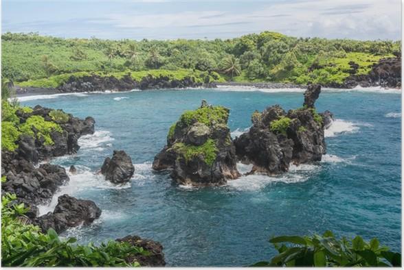 Plakát Vegetace na pobřeží Maui - Voda