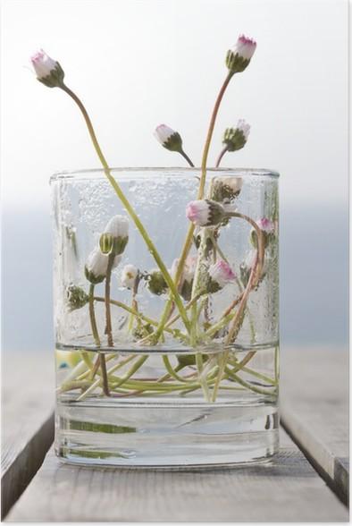 Plakát Vie fleur Lumiere Fraîcheur verre eau ressource Equilibre zen - Květiny