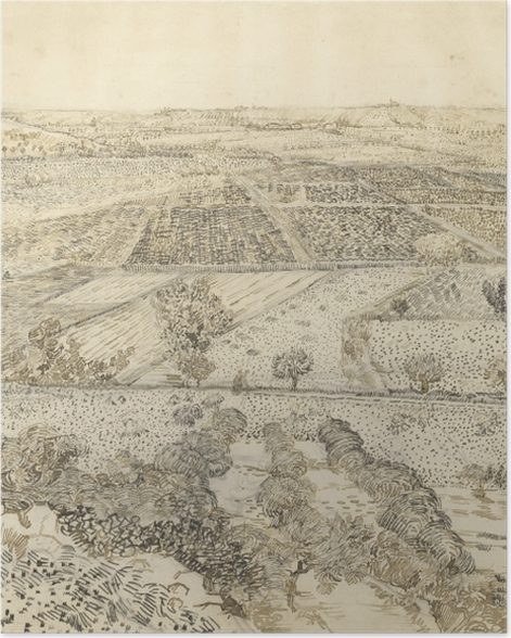 Plakat Vincent van Gogh - Widok na la Crau z Montmajour - Reproductions