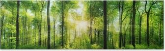Plakát Wald Panorama mit Sonnenstrahlen
