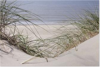 Plakat Wydmy na plaży