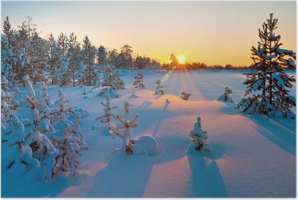 Plakát Západ slunce v zimním lese. - Témata