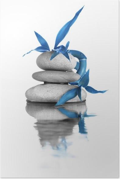 Plakát Zen kameny - Rostliny