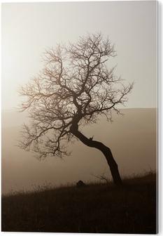 Pleksi Baskı Puslu sonbahar günbatımı ağaçlar