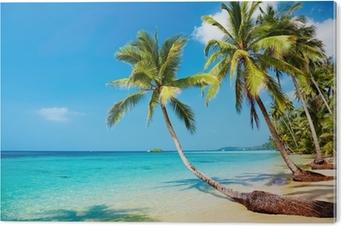 Pleksi Baskı Tropikal plaj