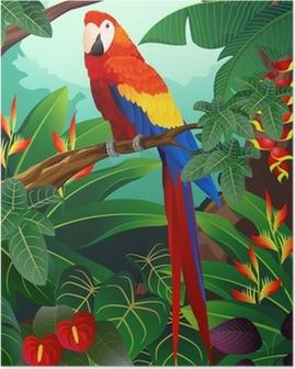 Poster Ara dettagliata uccello vettore