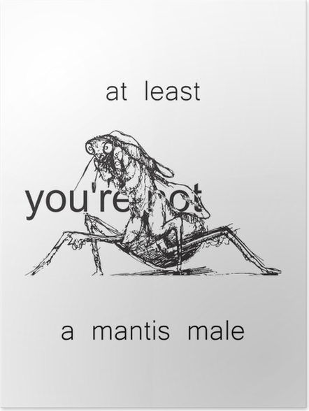 Poster At least you're not a mantis male -
