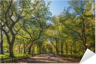 Poster Autoadesivo Bellissimo parco nella bellissima città ... parco centrale. l'area del centro commerciale a Central Park in autunno., New York City, Stati Uniti d'America