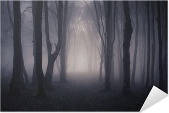 Poster Autoadesivo Percorso attraverso un bosco buio di notte