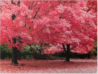 Poster Autumn Fantasy