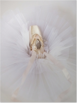 Poster Ballettschuhe 1