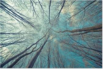Poster Bäume Web-Hintergrund