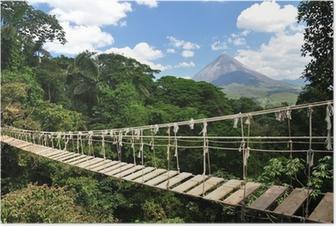 Poster Brücke im Dschungel