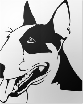 Poster Bull Terrier - Ritratto