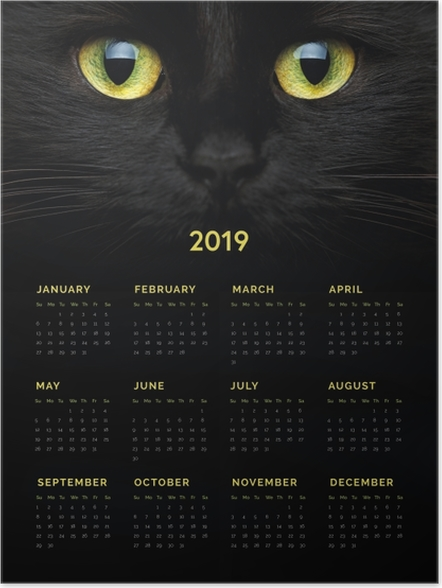 Poster Calendario 2019 - Gatto nero -